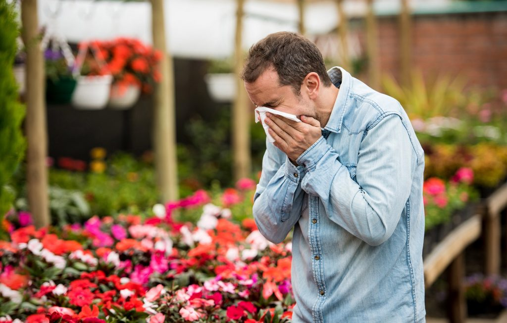 What You Need to Know About Spring Allergies